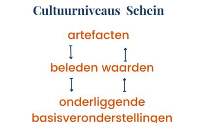 Cultuurniveaus van Schein
